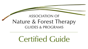 Certified Guide Logo